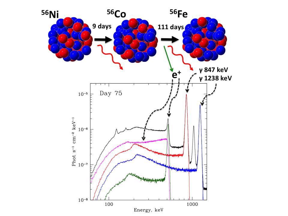 Радиоактивный распад никеля-56 и спектры, полученные гамма-обсерваторией ИНТЕГРАЛ. Иллюстрация предоставлена пресс-службой ИКИ РАН.