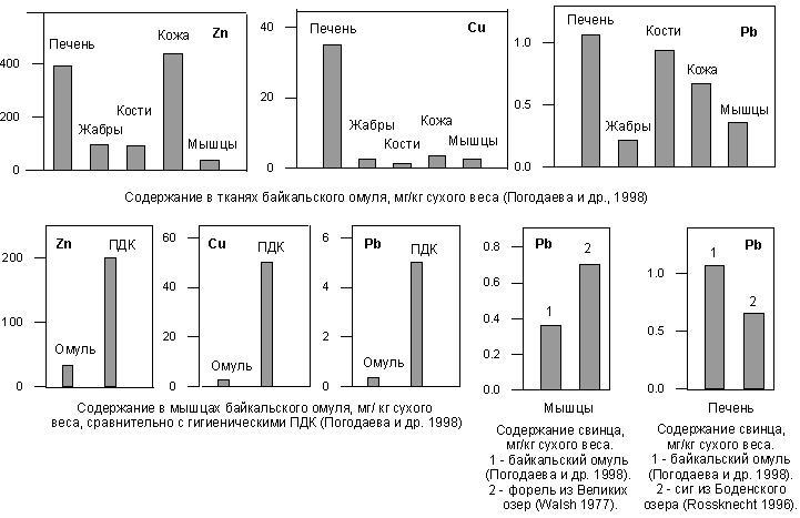 Рис. 2.2.4. Содержание цинка, меди и свинца в тканях рыб из озера Байкал, Великих озер Северной Америки и Боденского озера (Европа).